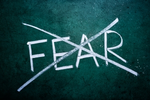 No Fear Year image