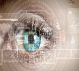 Vision—eye